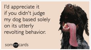 dog_behavior