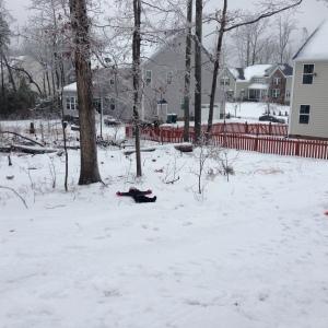 Snowday 2 21314